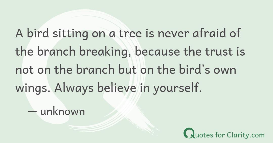A bird sitting…